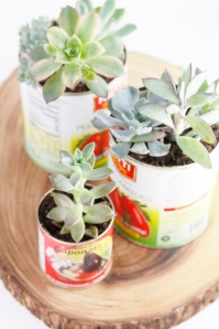 DIY-Recycled-Can-Succulent-Centerpiece-080-533x800